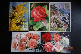 5 CARTES MAXIMUM ROSES + DIVERS - Rosas