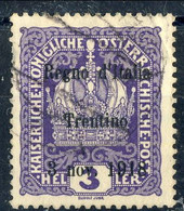 Trentino - Alto Adige 1918 Sass. N. 1 H 3 Violetto Usato Cat. € 25 - Trente