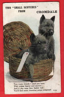 MORAYSHIRE  TOW SMALL SCOTCHES FROM CROMDALE   PULL OUT VIEWS  SYSTEME   SCOTTISH TERRIERS DOG - Moray