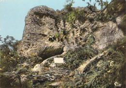 52 - Langres - La Grotte De Sabinus - Source De La Marne - Langres