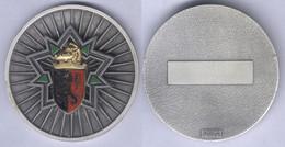 Médaille Du 3e Régiment De Génie - Army