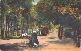 62. Le Touquet - Paris-Plage  - Sous Bois - Tramway  - L.L - Le Touquet