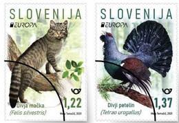 SLOVENIA  2021,NEW,28.5,EUROPA CEPT,ENDANGERED NATIONAL WILDLIFE,,BIRDS,CAT,MNH - Eslovenia