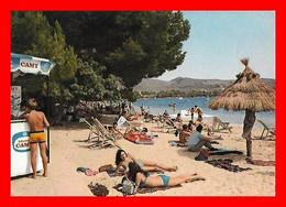 CPSM/gf  PUERTO DE POLLENSA (Majorque-Espagne)  Vue De La Plage, Animé...M884 - Mallorca