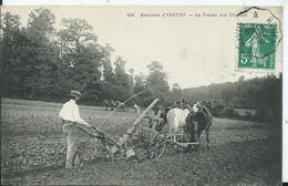 Environs D'YVETOT - Le Travail Aux Champs - Labourage - Yvetot
