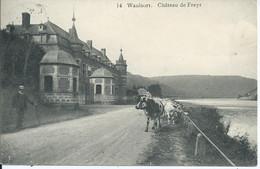 WAULSORT - Château De Freyr - Unclassified