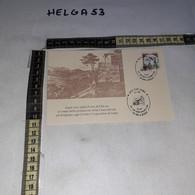 FB8808 SEGNI ROMA 1994 TIMBRO ANNULLO 100 ANNI DI ATTIVITA' CASSA RURALE E ARTIGIANA DI SEGNI - 1991-00: Storia Postale