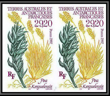 89992f/ Terres Australes Taaf N°220 Poa Kerguelensis Flore Flora Non Dentelé Imperf ** MNH Paire - Geschnitten, Drukprobe Und Abarten