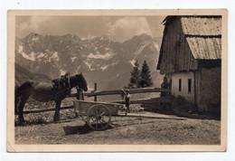1950. YUGOSLAVIA,SLOVENIA,JEZERSKO,KAMNIK ALPS IN A BACKGROUND,HORSE CART,ILLUSTRATED POSTCARD,USED - Slovenia