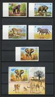 0170/ Umm Al Qiwain ** MNH Michel N° 478/482 B Bloc 34 Animaux Wild Animals Gorille éléphant Ours Non Dentelé Imperf - Umm Al-Qiwain