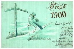 Année Date Millesime - 1900 - Hirondelle Humanisée Chemin Prosit Gaufré - Anno Nuovo