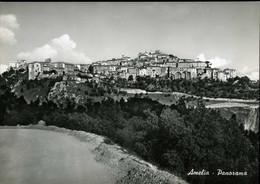 AMELIA PANORAMA VIAGGIATA 1954 PERFETTA - Terni