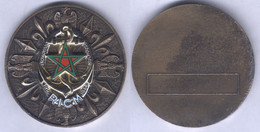 Médaille Du Régiment D'Infanterie Et De Chars De Marine - Army