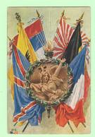 R072 - Illustration - Drapeaux Des Alliés - Ab.6 L.v.C - Patriottisch