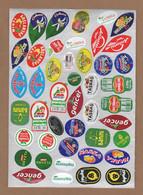 AC - FRUIT LABELS Fruit Label - STICKERS LOT #61 - Frutas Y Legumbres
