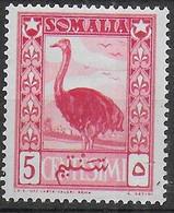 SOMALIA AFIS - 1950 - SERIE ORDINARIA - LO STRUZZO  - CENT. 5 - NUOVO MNH** ( YVERT 232 - MICHEL 245) - Somalia (AFIS)