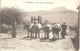 Dépt 48 - MARVEJOLS - Pic Du Midi - Attelage Lozérien - (Édit. Pagès-Roux, Tabacs-Bar, N° 31) - Marvejols