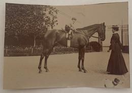Lot De 10 Photos Originales équitation. Cheval. Cavalier. 1902. Toulouse ? - Sporten