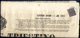 """Cover 1856, Giornale """"Oservatore Triestino Del 29.7.1856 Affrancato Con Segnatasse Per Giornali B.G. 9 C. Violetto Grigi - Modena"""