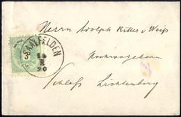 Cover 1890, Brief Von Saalfelden Am 10.8. Nach Schloss Lichtenberg Mit 3 Kr. Ortsfrankatur, Selten, ANK 45 - Sin Clasificación