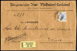 Cover 1896, Eingeschriebene Dienstsache Von Pernersdorf-Pfaffendorf Am 13.7. Nach Wien Frankiert Mit 10 Kr. (Recogebühr) - Sin Clasificación