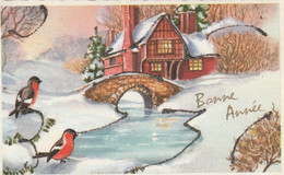 1032 -  CARTE BONNE  ANNEE .OISEAUX PONT RUISSEAU MAISON PAILLETTES PAYSAGE ENNEIGE - Neujahr