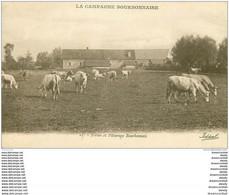 WW 03 LA CAMPAGNE BOURBONNAISE. Ferme Et Vaches Au Pâturage - Bourbon L'Archambault
