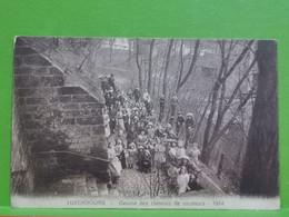 Luxembourg, Œuvre Des Colonies De Vacances 1914 - Andere