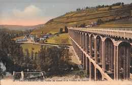 22 - SAINT-BRIEUC - La Vallée Du Gouët Et Le Viaduc De Souzin. - Saint-Brieuc