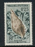 Wallis & Futuna 1962-63 Seashells 25c FU - Used Stamps