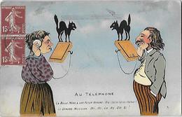 Poste - Humour Humoristique - Au Téléphone - La Belle-Mère A Son Futur Gendre...- Chat Chats - Postal Services
