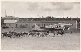CPA - Douglas DC 3 - Compagnie Finnish Airlines - Aéroport De Rovaniemi ( Finlande ) - 1946-....: Era Moderna
