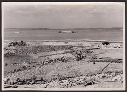 Photo Originale Honfleur - Travaux - Construction De La Cale De Lancement Des Matelas De Fascines - Est - 26 Août 1948 - Luoghi