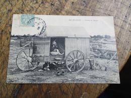 En Beauce Cabane De Berger  Troupeau Mouton  1906 - Other Municipalities