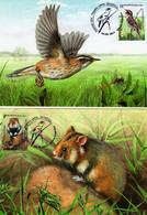 Belarus - 2021 - Europa CEPT - Endangered National Wildlife - Warbler Bird And Hamster - Maximum Cards Set - Belarus