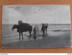 Coxyde Pêcheurs 10/08/1924 - Koksijde