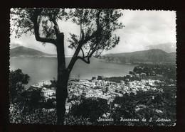 SORRENTO PANORAMA DA SANT'ANTONINO LAVORATA AI BORDI VIAGGIATA 1951 - Napoli (Naples)