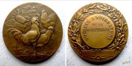 Médaille Bronze -  Société D'Aviculture De La Mayenne - A. Rivet - Other