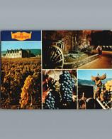En Bourgogne - Cpm - Multivues 4 Sur Le Thème Du Vin - 1987 - Bourgogne
