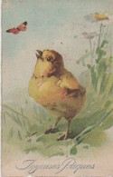 "C. KLEIN - Non Signée - Poussin Et Papillon   (Edit. HWB  / SER N° 2251)   ""Joyeuses Pâques "" - Klein, Catharina"
