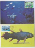 EAST LONDON RSA CARTE-MAXIMUM POISSON FOSSILE COELACANTHE FOSSIL COELACANTH FISH CARD SELAKANT LOT DE 2 CARTES POSTALES - Fósiles