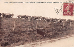 Scènes Champêtres - Un Camp De Vacherie Sur Le Plateau D'Aubrac - Très Bon état - Otros Municipios