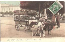 Dépt 69 - LYON - Place Bellecour - La Voiture Aux Chèvres - (E. R. N° 270) - Enfants, Attelage De Chèvres - Non Classificati
