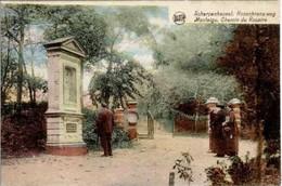 MONTAIGU-SCHERPENHEUVEL - Chemin Du Rosaire - Oblitération De 1931 - Scherpenheuvel-Zichem