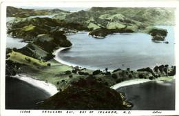 PC CPA NEW ZEALAND, ORAUKAWA BAY, BAY OF ISLANDS, Vintage Postcard (b27174) - New Zealand