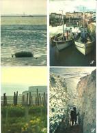 "Lot 20   CPM ""Prestige""   Charente Maritime     Photos M Guillard Voir Scans - Altri Fotografi"
