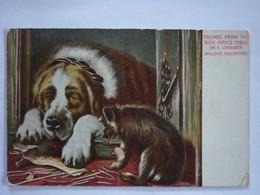 AK Hund Bernhardiner - Dogs