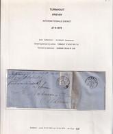 DDZ 283 - Lettre TP 31 Simple Cercle TURNHOUT 1878 Vers ALKMAAR NL - SUPERBE Entete Verheyen § Cie , Linnen Bleekerij - 1869-1883 Leopoldo II
