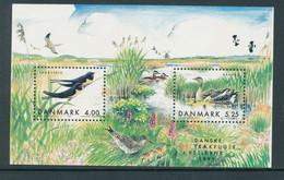 Denmark 2 Souvenir Sheets In Mint Condition (Danish Migratory Birds) 2008 - Ongebruikt
