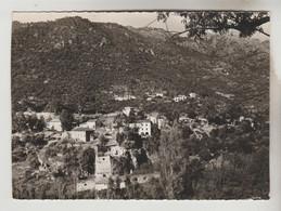 CPSM OTA (Corse Du Sud) - PORTO : Vue Générale - Otros Municipios